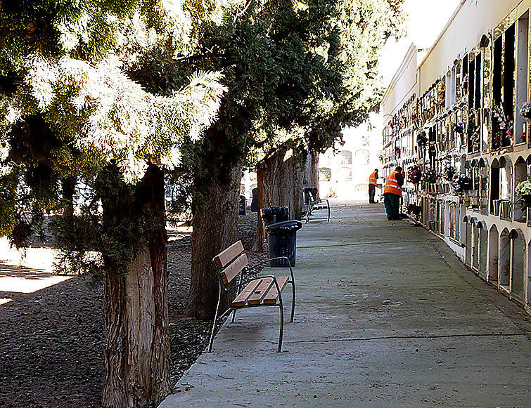 Les borges renova serveis de jardineria i neteja per for Jardineria la noguera